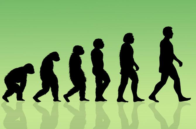 human-evolution-670
